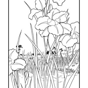 hiroshige-flowers-japanese-colouring-book-2